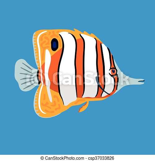 Tropical ocean butterfly fish, vector illustration - csp37033826