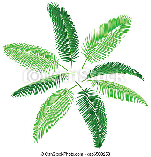 Tropical Palm Trees Vector Illustration Of Palm Leaves Make Your Own Palm