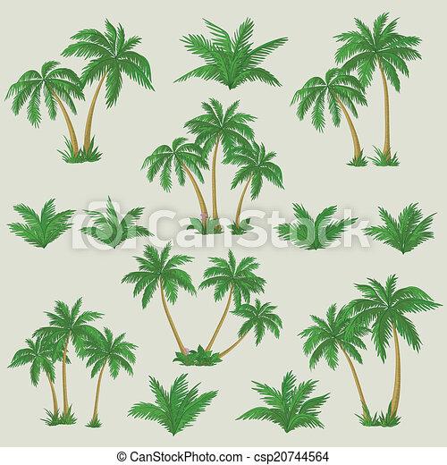 Tropical palm trees set - csp20744564