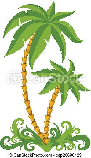 Palmas tropicales - csp20690423