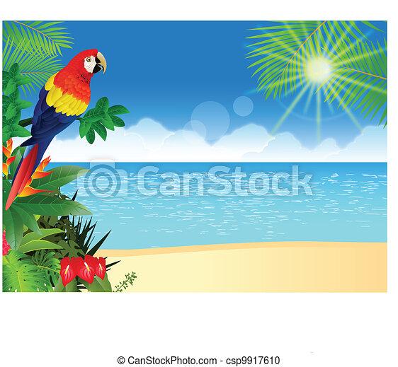 Un guacamayo de playa tropical - csp9917610