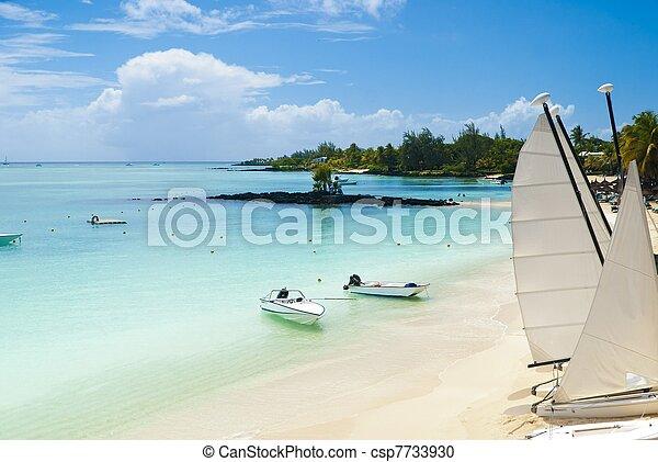 Tropical paradise - csp7733930
