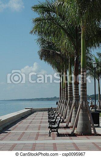 tropical, parque - csp0095967