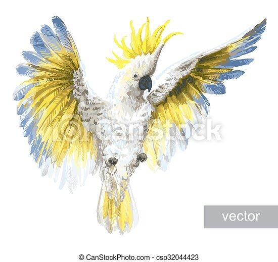 Tropical Parrots Crested Cockatoo Tropical Birds Parrots