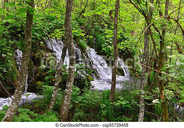 Una pequeña cascada tropical en la selva tropical - csp55729458