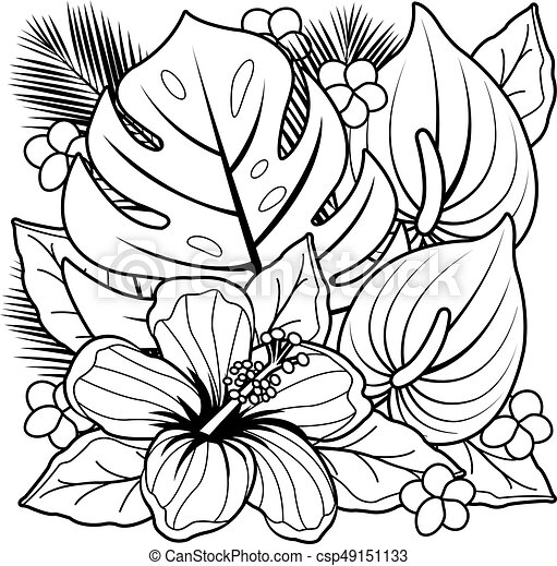 Tropical Plants And Hibiscus Flowers Black And White Coloring Book