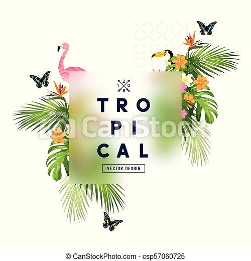 Tropical Rainforest Frame - csp57060725