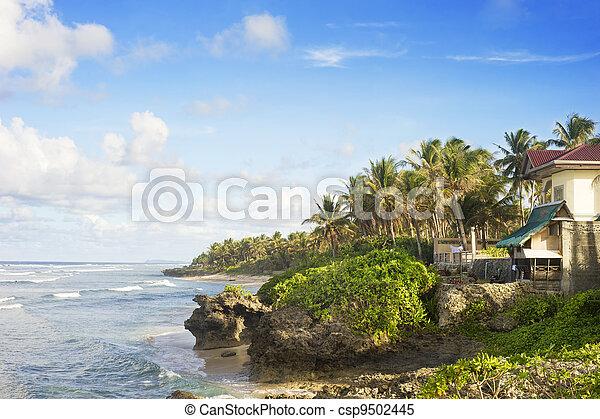 Tropical resort - csp9502445