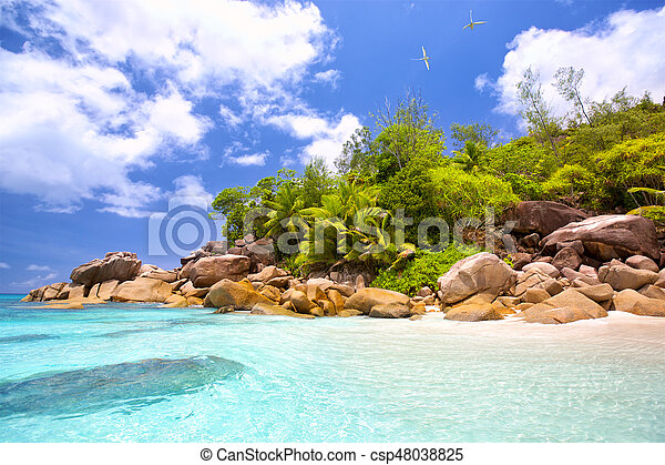 Playa tropical Seychelles - csp48038825