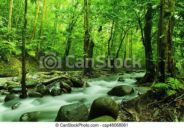 Tropical stream flowing - csp48068061