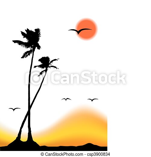 Tropical sunset, palm tree silhouette - csp3900834