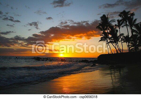 tropical sunset - csp0656318