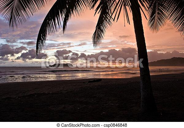Tropical Sunset - csp0846848