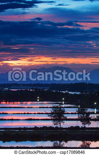 tropical sunset - csp17089846