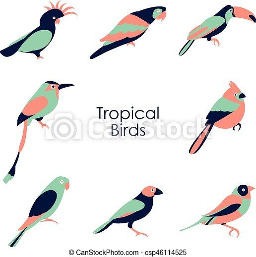 Ilustración de vectores de icono de aves tropicales - csp46114525