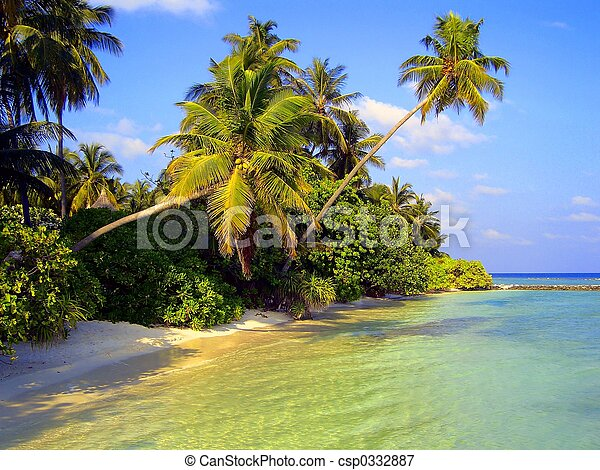 Tropical view - csp0332887
