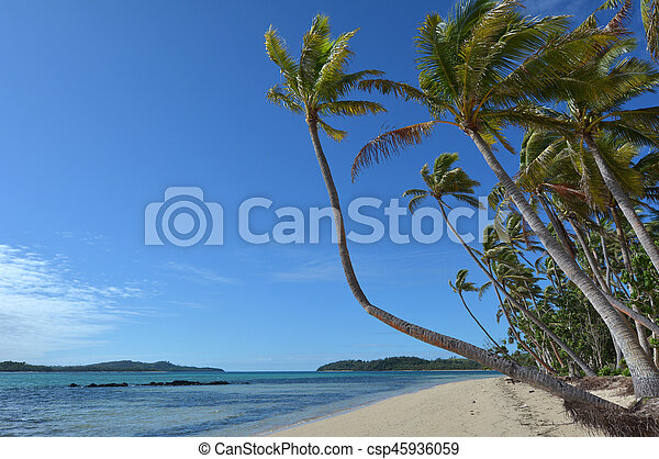 tropicale, figi, spiaggia, remoto, paesaggio - csp45936059