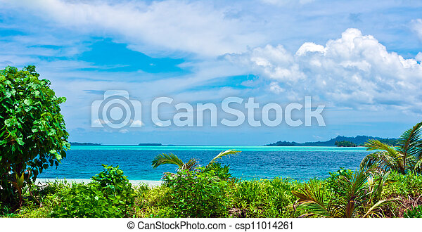 tropicale, isole, disertare paesaggio - csp11014261