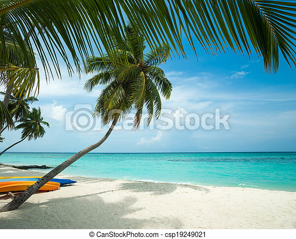 tropicale, perfetto, isola paradiso - csp19249021