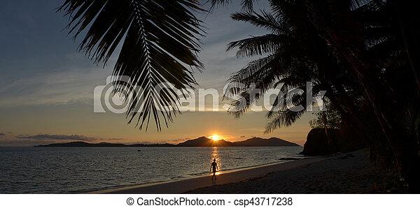 tropicale, persona, tramonto, camminare, durante, spiaggia - csp43717238
