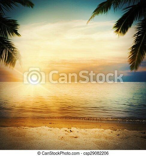 tropicale, spiaggia tramonto - csp29082206