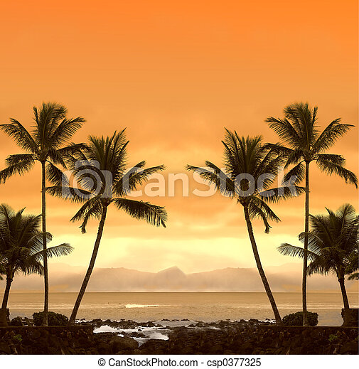 tropicale, tramonto - csp0377325