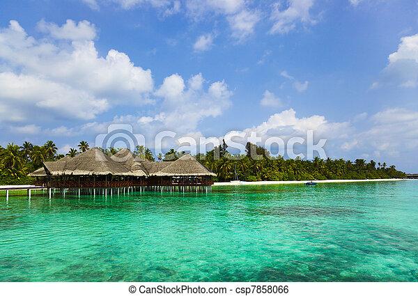 tropikalna woda, malediwy, kawiarnia, plaża - csp7858066