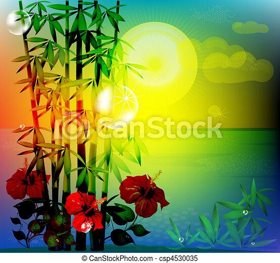 tropikalny krajobraz - csp4530035
