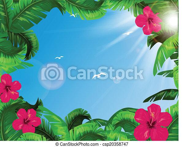 tropikalny, liście - csp20358747