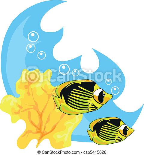 tropikalny, wody - csp5415626