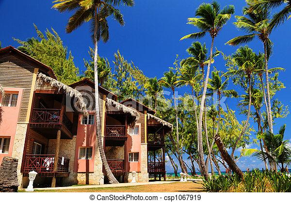 tropikus, erőforrás, tengerpart, óceán - csp1067919