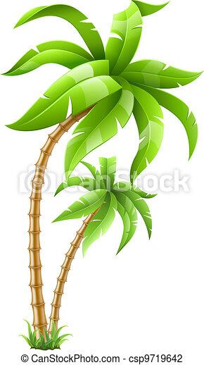 tropikus, pálma fa - csp9719642