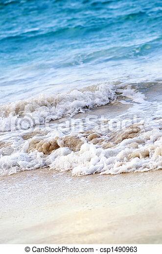 tropikus, tengerpart, eltörik lenget - csp1490963