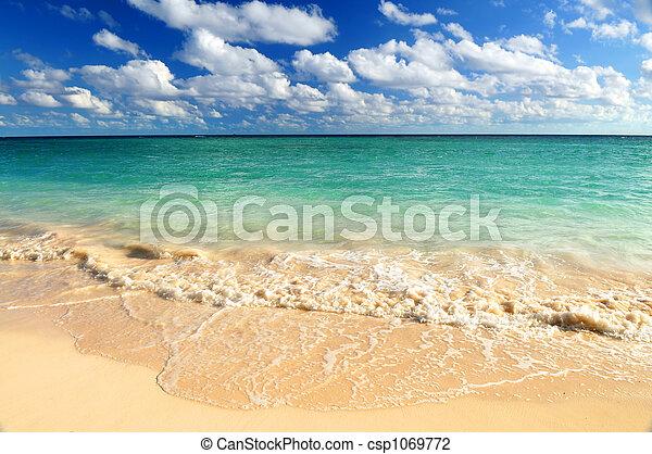 tropisch strand - csp1069772