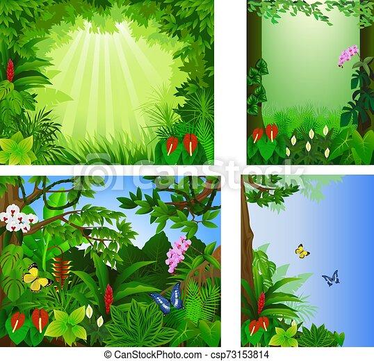 tropische , groß, vektor, wald, satz, rahmen, schöne , abbildung, ikone - csp73153814