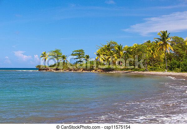 tropische , jamaica., natur - csp11575154