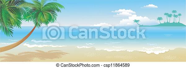 tropische , panoramisch, sandstrand, handfläche - csp11864589