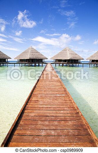 tropischer strand - csp0989909