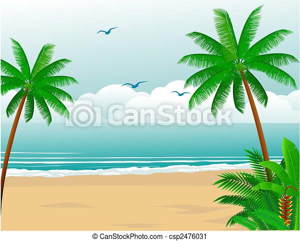 tropischer strand - csp2476031