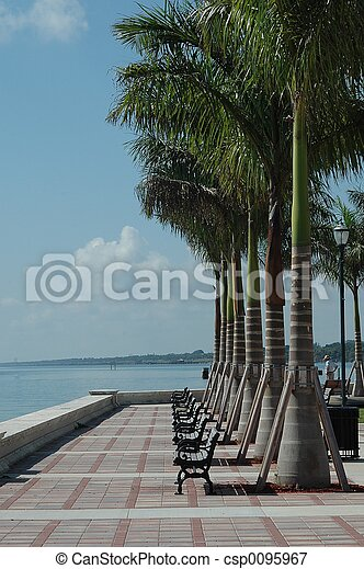 tropisk, parkera - csp0095967