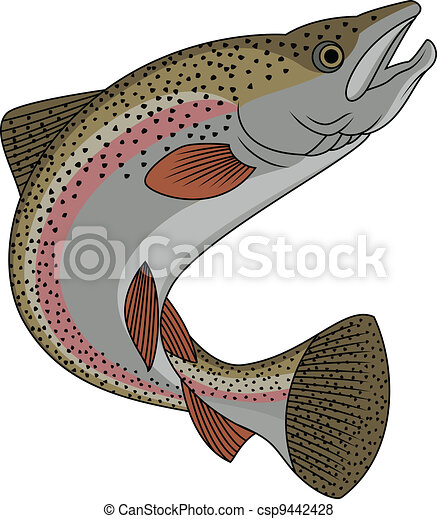 Trout fish  - csp9442428