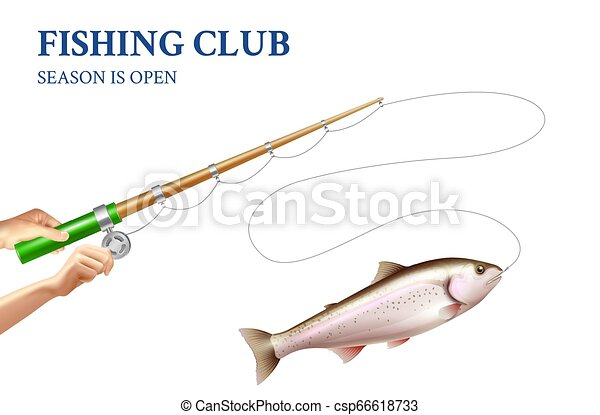 Trout Fishing Realistic Illustration Fishing Of Rainbow Trout On Rod With Spinning Reel On White Background Realistic Vector
