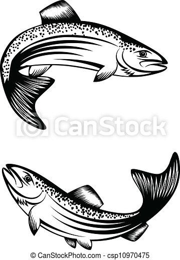trout - csp10970475