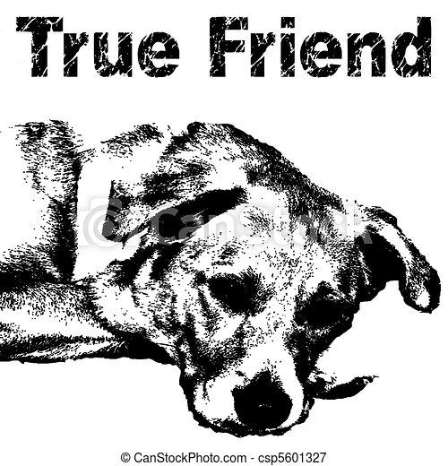 true friend  - csp5601327