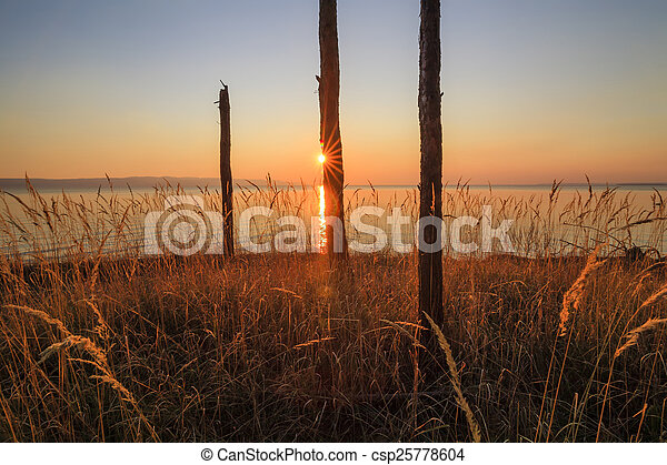 Trunks of dead wood on the shore of a huge lake - csp25778604