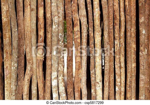 trunks wooden wall in rainforest jungle house - csp5817299