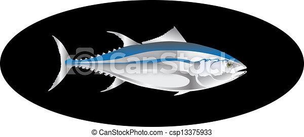 tuńczyk, wektor, fish - csp13375933