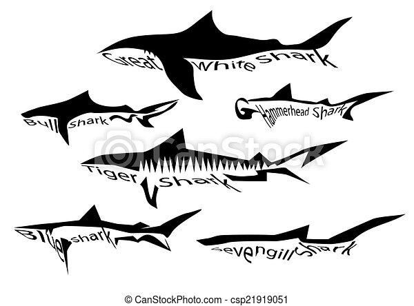 tubarão, espécie - csp21919051