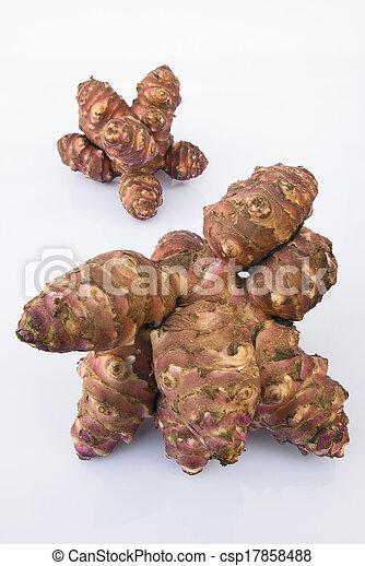 tuberosus), (helianthus, raiz, topinambur - csp17858488