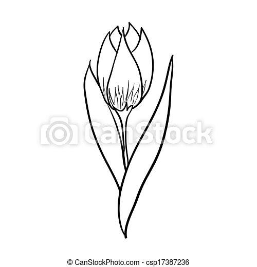 tulip sketch vector hand drawn tulip black sketch on white background